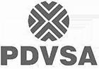 PDVSA logo image